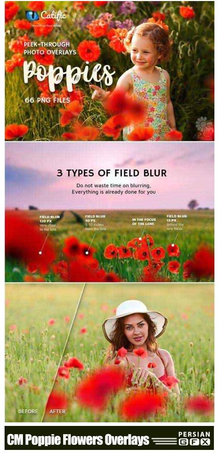 دانلود کلیپ آرت و اکشن فتوشاپ ایجاد افکت گل های قرمز بر روی تصاویر - CreativeMarket 17 Poppie Flowers Photo Overlays