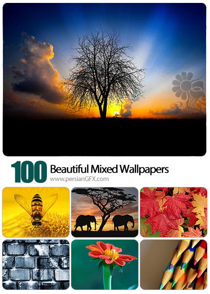 دانلود والپیپرهای زیبا و متنوع - Beautiful Mixed Wallpapers 10