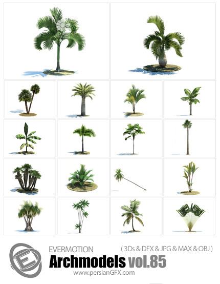 دانلود مدل های آماده سه بعدی درخت ها و نخل ها و سایر درختان بلند قامت و ... - Archmodels Vol 85