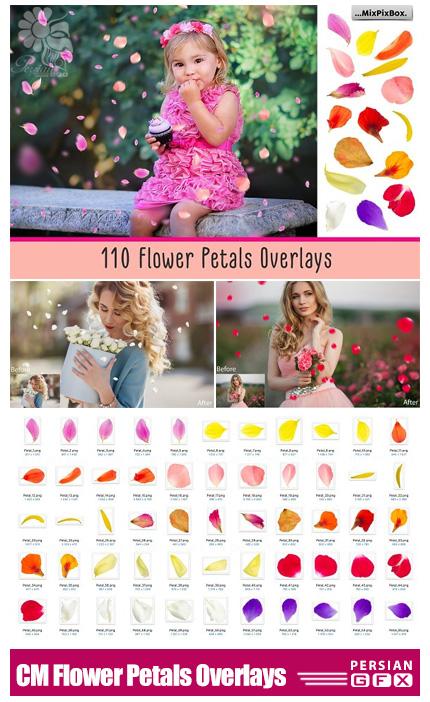 دانلود کلیپ آرت گلبرگ های رنگی متنوع - CreativeMarket Flower Petals Photo Overlays