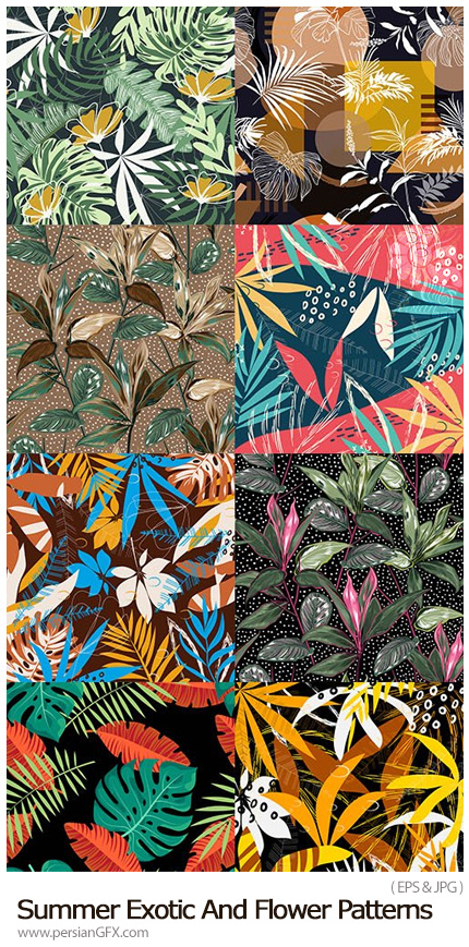 دانلود پترن وکتور گل های تابستانی - Summer Exotic And Flower Seamless Patterns