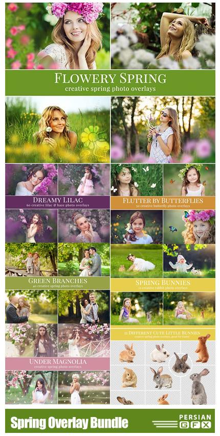 دانلود مجموعه تصاویر پوششی بهاری شامل گل، پروانه، شاخ و برگ و ... - Spring Photo Overlay Bundle
