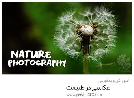 دانلود آموزش عکاسی در طبیعت: شارژ شدن و لذت بردن از فضای بیرون - Skillshare Nature Photography: Recharge And Enjoy The Outdoors