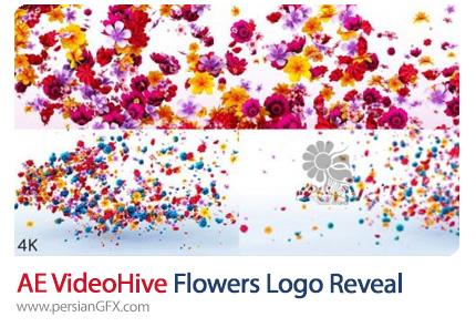 دانلود پروژه افترافکت نمایش لوگو با افکت گل های پراکنده به همراه آموزش ویدئویی - Videohive Flowers Logo Reveal