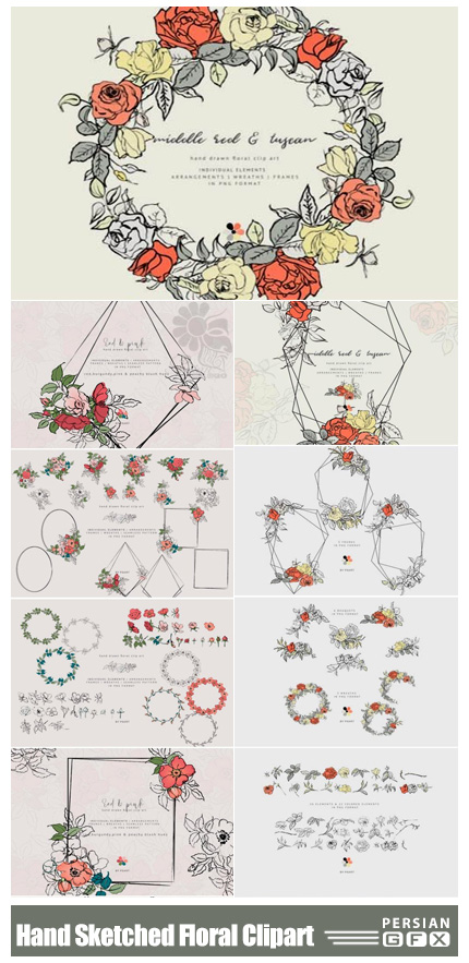 دانلود کلیپ آرت عناصر طراحی گلدار شامل فریم، گل و بوته و پترن - Hand Sketched Floral Clipart Collection