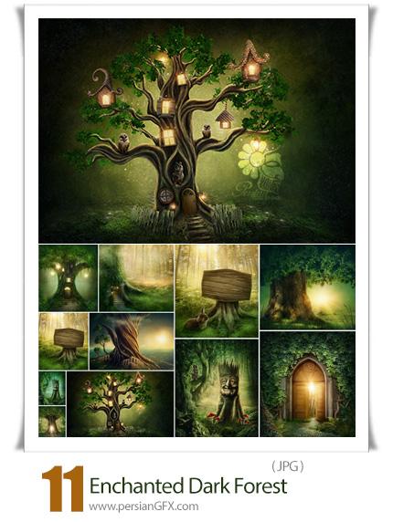 دانلود 11 عکس با کیفیت جنگل تاریک جادویی - Enchanted Dark Forest