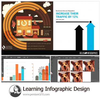 دانلود آموزش طراحی اینفوگرافیک در ایلوستریتور - Learning Infographic Design
