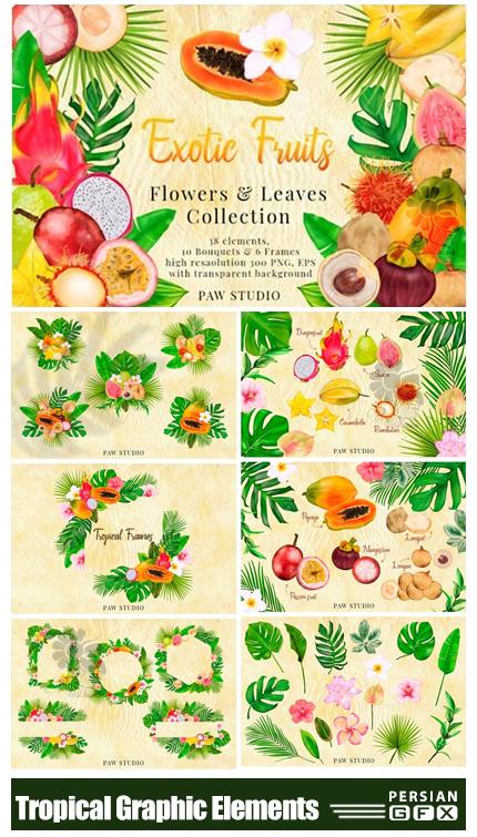 دانلود المان های گرافیکی میوه و گل و گیاه به سبک استوایی - Tropical Graphic Elements