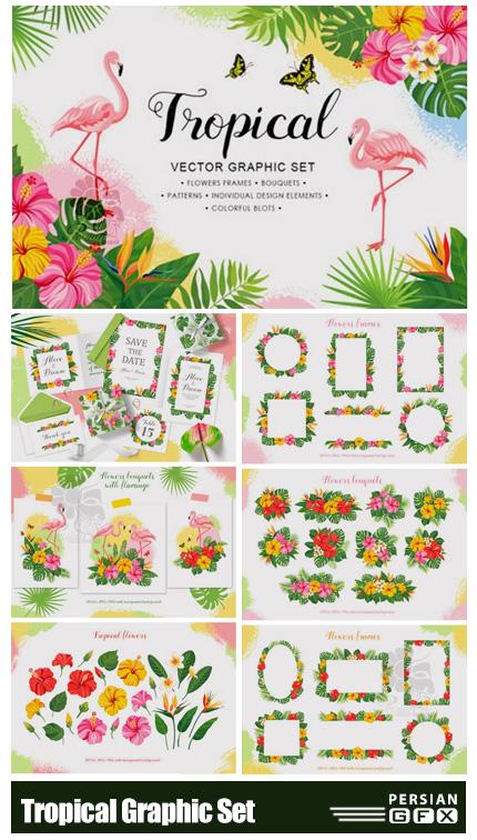 دانلود مجموعه عناصر طراحی تابستانی شامل بت و جقه، فریم و بک گراند - Tropical Vector