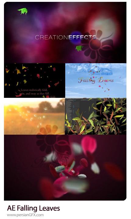 دانلود کیت طراحی ریزش برگ، گلبرگ و قاصدک در افترافکت - Falling Leaves