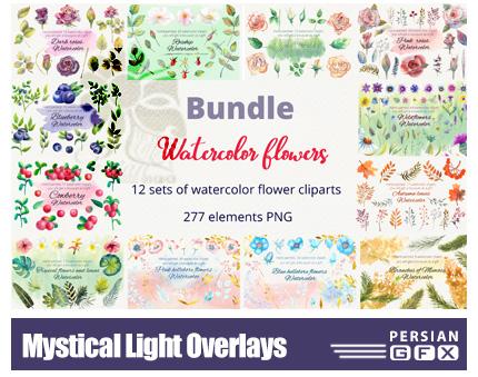 دانلود پک کلیپ آرت عناصر گلدار آبرنگی متنوع - Watercolor Flowers Clipart
