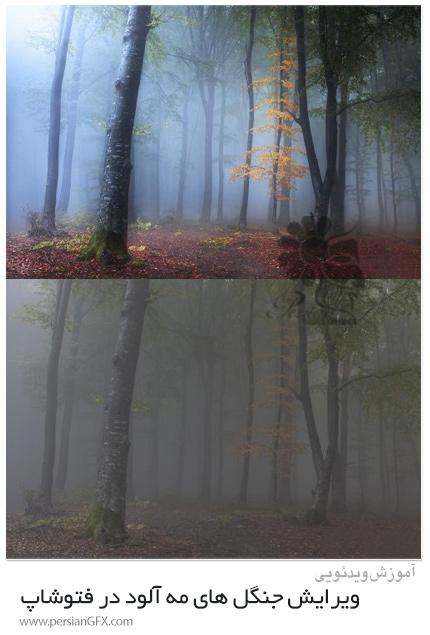 دانلود آموزش ویرایش جنگل های مه آلود در فتوشاپ - Editing Foggy Forests