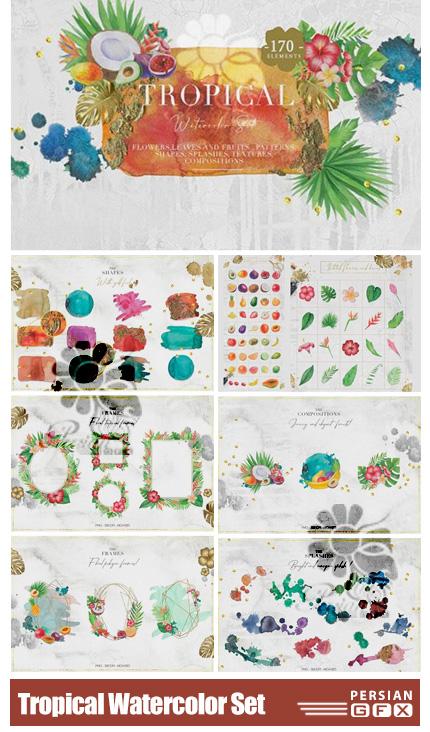 دانلود کلیپ آرت عناصر آبرنگی تروپیکال فریم، پترن، بک گراند و ... - Tropical Watercolor Set