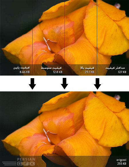[تصویر: 1262098457_jpeg-comparisons.jpg]