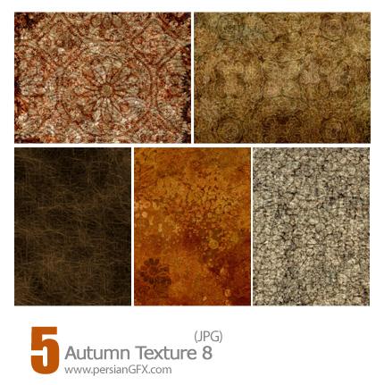 دانلود بافت پاییز، خزان - Autumn Texture 08