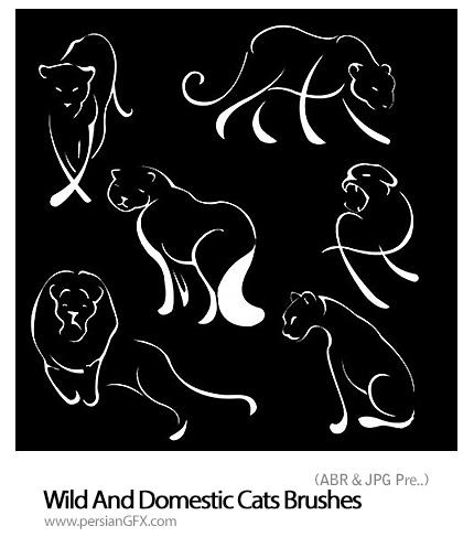 مجموعه براش های گربه وحشی و اهلی - Wild And Domestic Cats Brushes