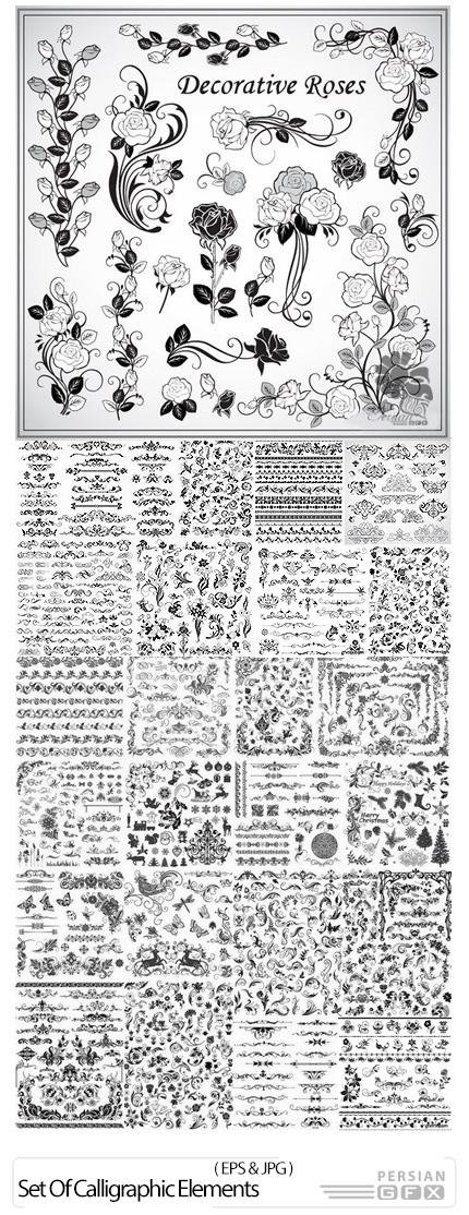 دانلود تصاویر وکتور عناصر طراحی گلدار برای تزئین صفحات - Set Of Calligraphic Elements For Page Decoration