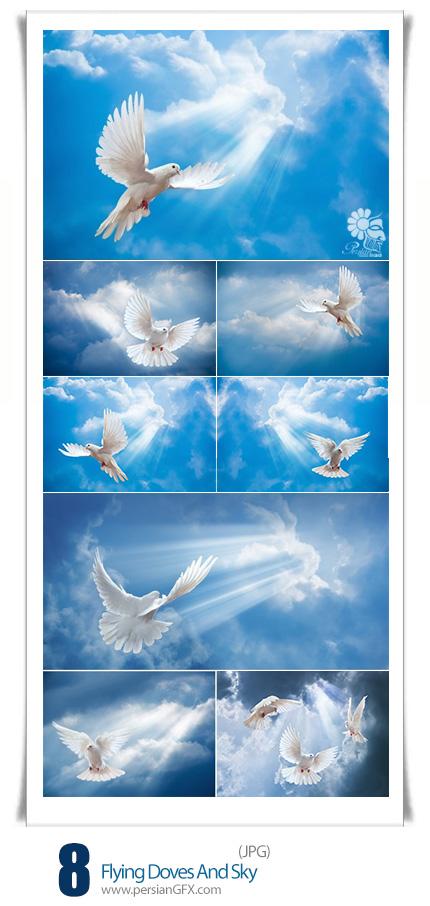 دانلود تصاویر با کیفیت پرواز کبوترها و آسمان - Stock Photo Flying Doves And Sky