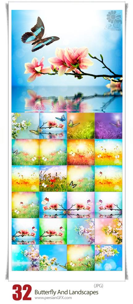 دانلود تصاویر با کیفیت منظره گل و پروانه - Butterfly And Landscapes