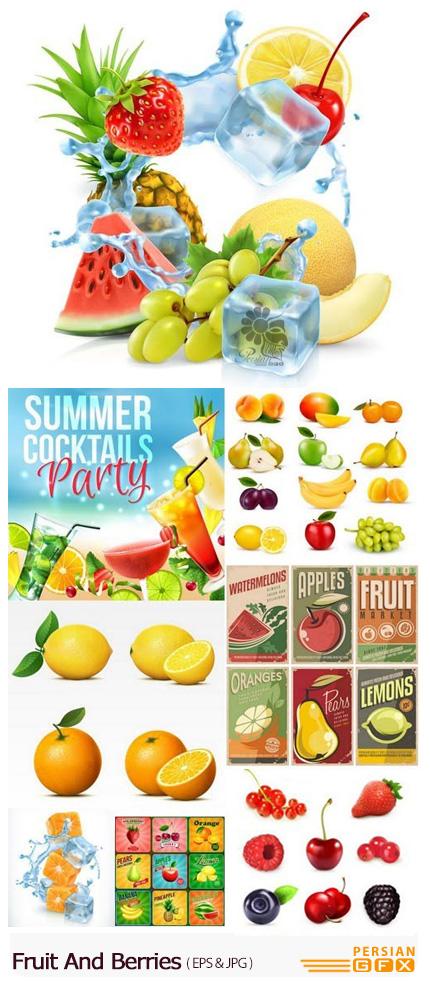 دانلود تصاویر وکتور میوه و توت های متنوع، انگور، هندوانه، سیب و ... - Fruit And Berries
