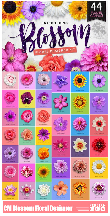 دانلود 44 تصویر کلیپ آرت گل و شکوفه های متنوع - CM Blossom Floral Designer Kit
