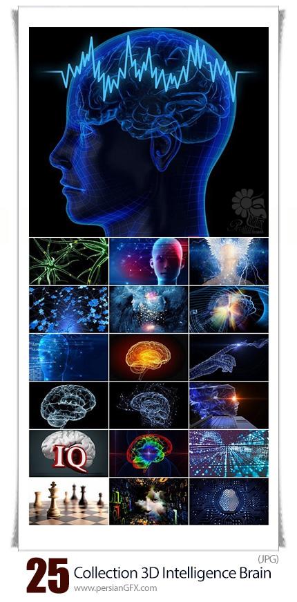 دانلود مجموعه تصاویر با کیفیت سه بعدی مغز باهوش، مغز انسان، آیکیو و آناتومی مغز - Collection 3D Intellect Intelligence Brain