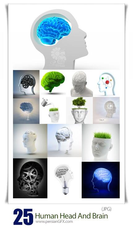 دانلود تصاویر با کیفیت مفهومی مغز و سر انسان - Human Head And Brain