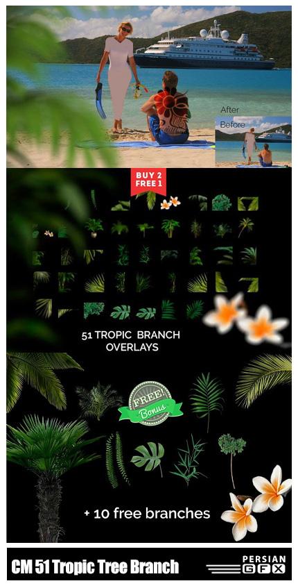 دانلود 51 تصویر کلیپ آرت شاخ و برگ درختان - CM 51 Tropic Tree Branch Photo Overlays