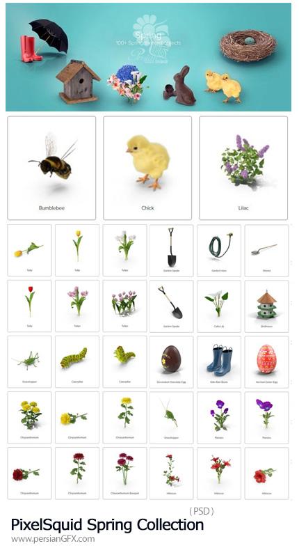 دانلود مجموعه تصاویر لایه باز المان های بهار، شکوفه، جوجه، گل و گیاه، تخم مرغ رنگی و ... - PixelSquid Spring Collection