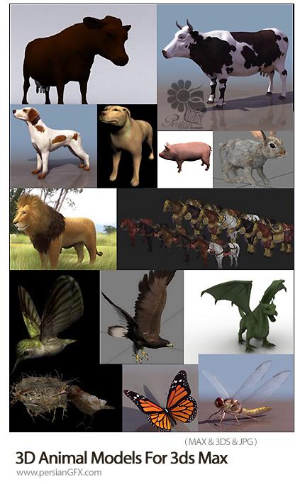 دانلود مدل های سه بعدی آماده حیوانات برای تریدی مکس - 3D Animal Models For 3ds Max