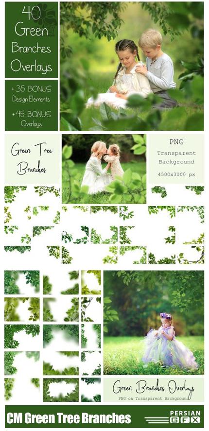 دانلود 120 تصویر کلیپ آرت شاخ و برگ سبز درختان - CM 120 Green Tree Branches Overlays