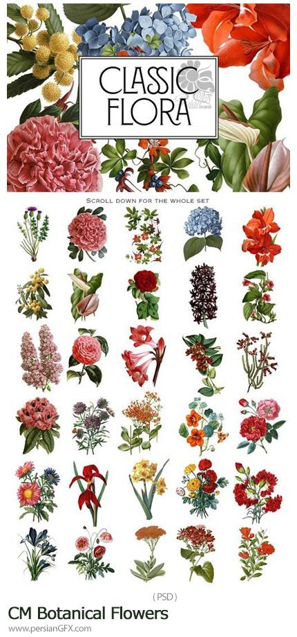 دانلود مجموعه تصاویر لایه باز گل و گیاه زیبا برای طراحی - CM Botanical Flowers