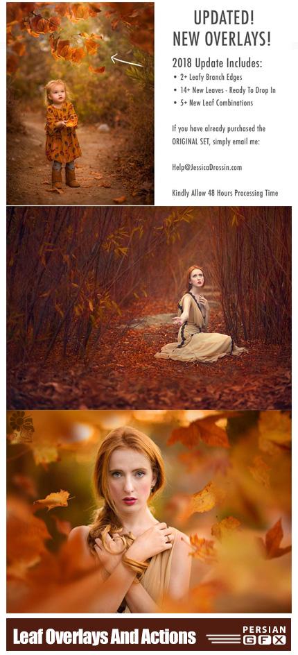 دانلود کلیپ آرت و اکشن فتوشاپ ایجاد افکت برگ های پاییزی بر روی تصاویر - JD Special Effects: Leaf Overlays And Actions