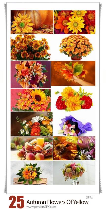 دانلود تصاویر با کیفیت گل های زرد پاییزی، سبد گل، دسته گل و برگ های پاییزی - Autumn Flowers Bouquet Of Yellow