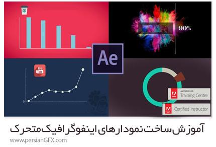 دانلود آموزش ساخت نمودارهای اینفوگرافیک متحرک در افترافکت سی سی - Skillshare After Effects CC Animated Infographic Video And Data Visualisation