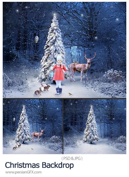 دانلود بک گراندهای زمستانی برای آتلیه عکاسی - Christmas Backdrop