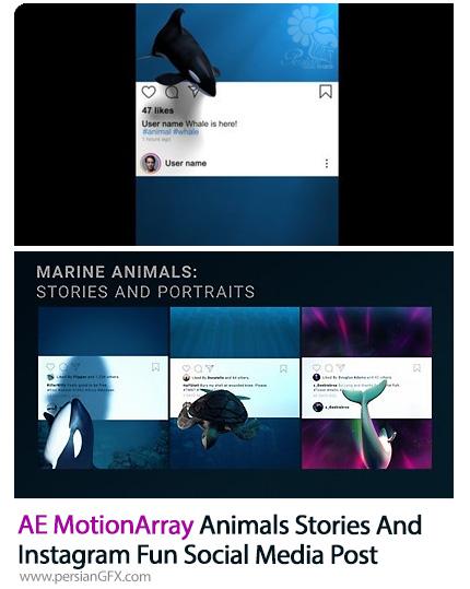 دانلود 2 پروژه افترافکت پست های خلاقانه سه بعدی برای اینستاگرام - MotionArray Animals Stories And Instagram Fun Social Media Post