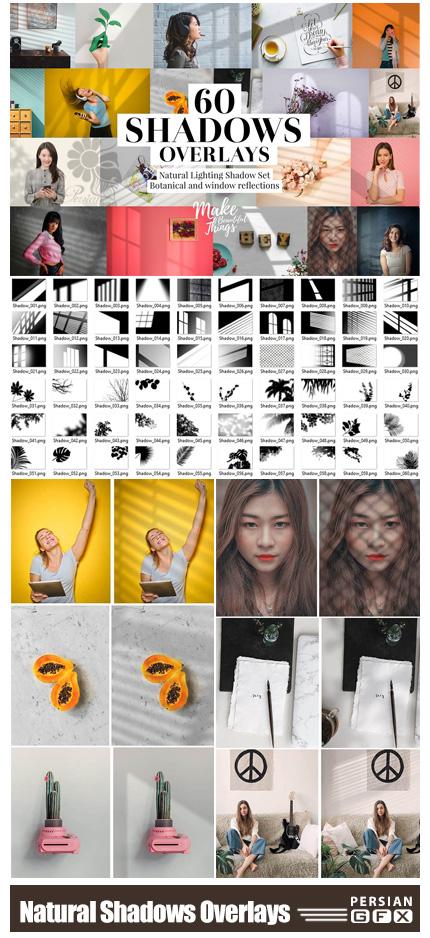 دانلود سایه پنجره و گل و گیاه برای تصاویر - CreativeMarket Natural Shadows Overlays Set