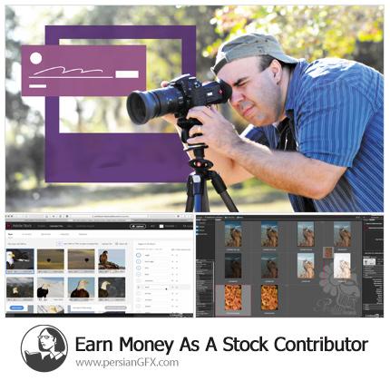 دانلود آموزش اصول و روش عکاسی از لیندا - Lynda Earn Money As A Stock Contributor