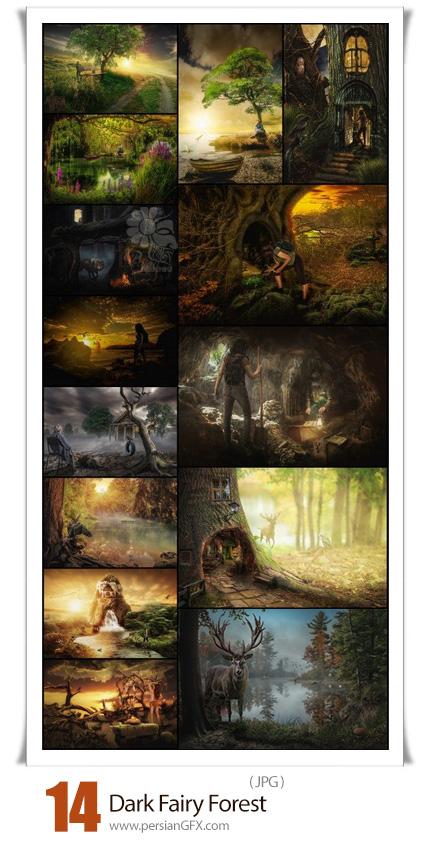 دانلود 14 عکس با کیفیت جنگل جادویی تاریک - Dark Fairy Forest