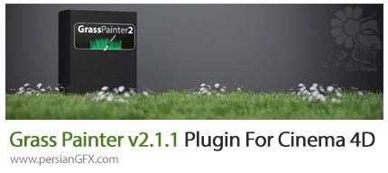 دانلود پلاگین سینما فوردی Grass Painter v2.1.1 ابزار ساخت سبزه و علف - Grass Painter v2.1.1 Plugin For Cinema 4D