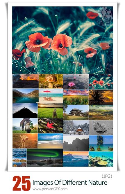دانلود 25 عکس با کیفیت مناظر مختلف طبیعت - Images Of Different Nature