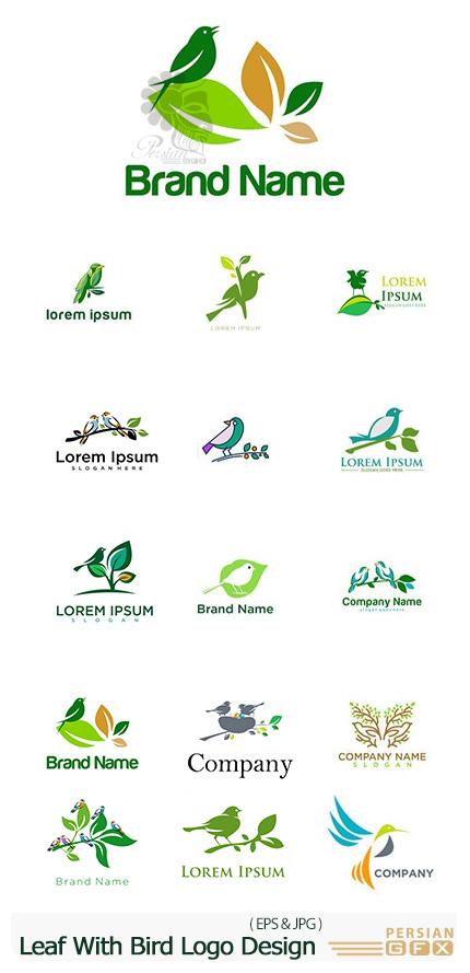 دانلود وکتور آرم و لوگوی پرندگان با شاخ و برگ - Leaf With Bird Logo Design Template
