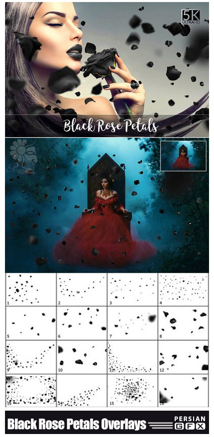 دانلود کلیپ آرت گلبرگ های رز مشکی با کیفیت 5K - CM 5K Black Rose Petals Overlays