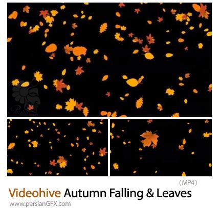 دانلود 3 فوتیج ریزش برگ های پاییزی - Videohive Autumn Falling And Leaves Overlays