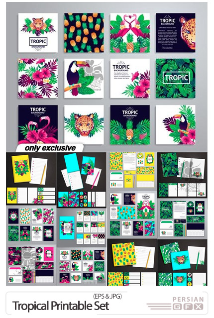 دانلود وکتور ست اداری با طرح های استوایی - Tropical Printable Set