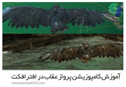 دانلود آموزش کامپوزیشن پرواز عقاب در افترافکت - Compositing In After Effects Eagle Flight