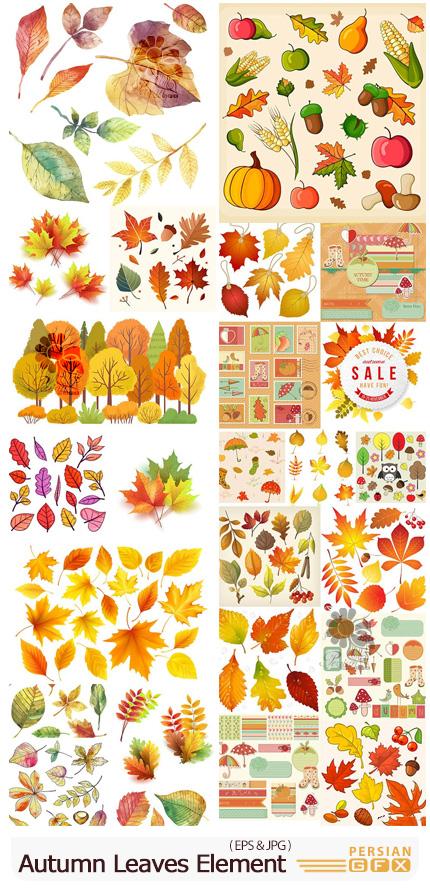دانلود مجموعه وکتور المان های پاییزی شامل برگ، بت و جقه، چتر، لیبل و ... - Autumn Leaves Design Element