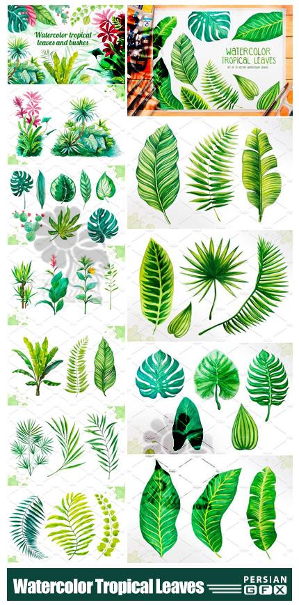 دانلود المان های آبرنگی برگ های تروپیکال برای طراحی - Watercolor Tropical Leaves