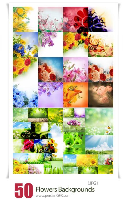 دانلود مجموعه بک گراندهای با کیفیت گل های طبیعی رنگارنگ - Flowers Backgrounds